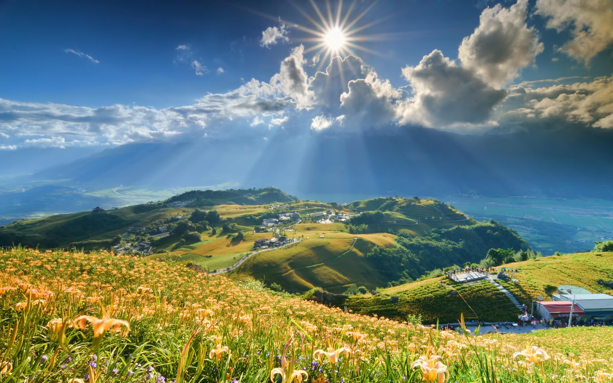 склон зелень лето загрузить