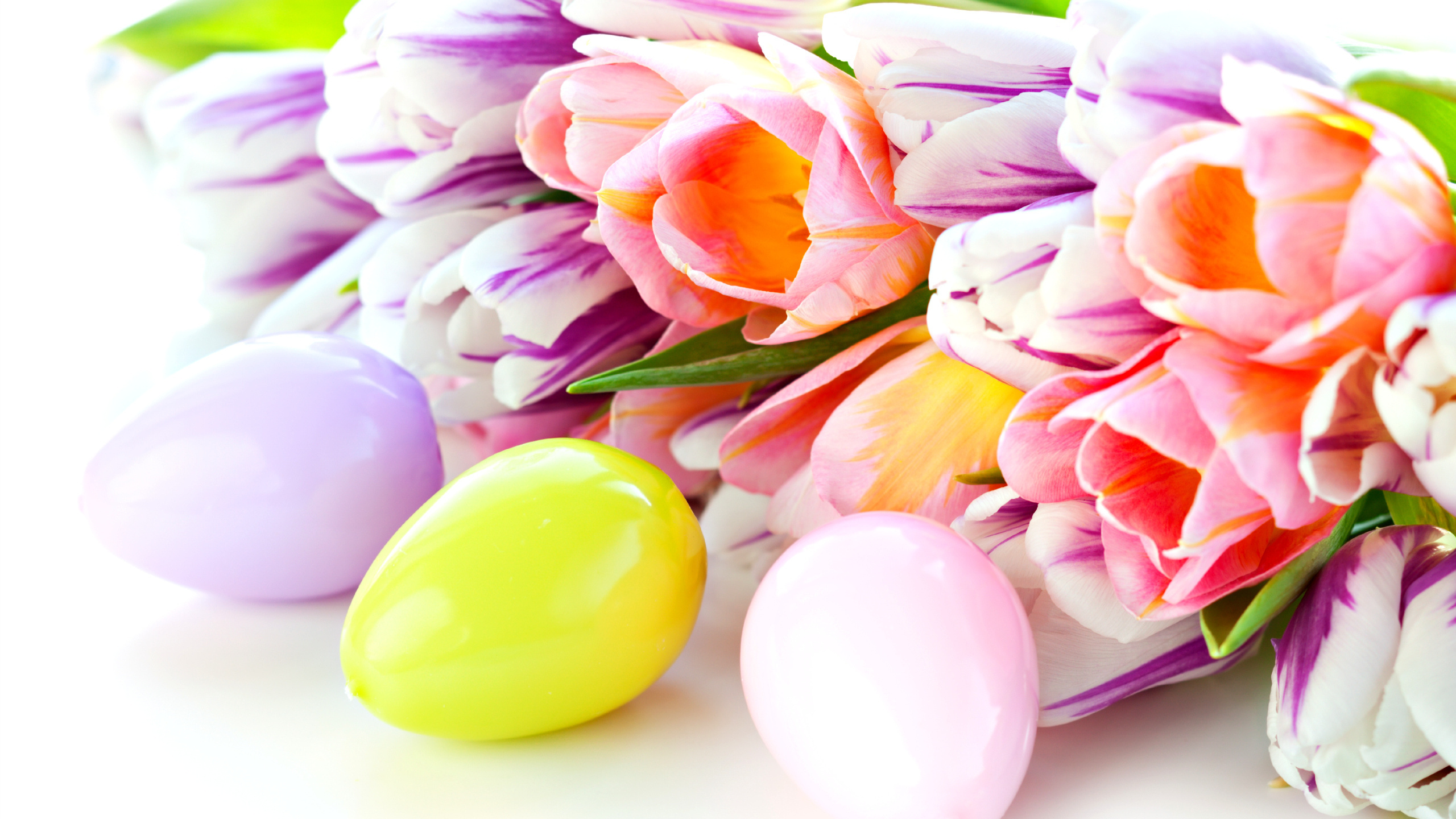 Открытки на пасху с цветами, маргариты открытка