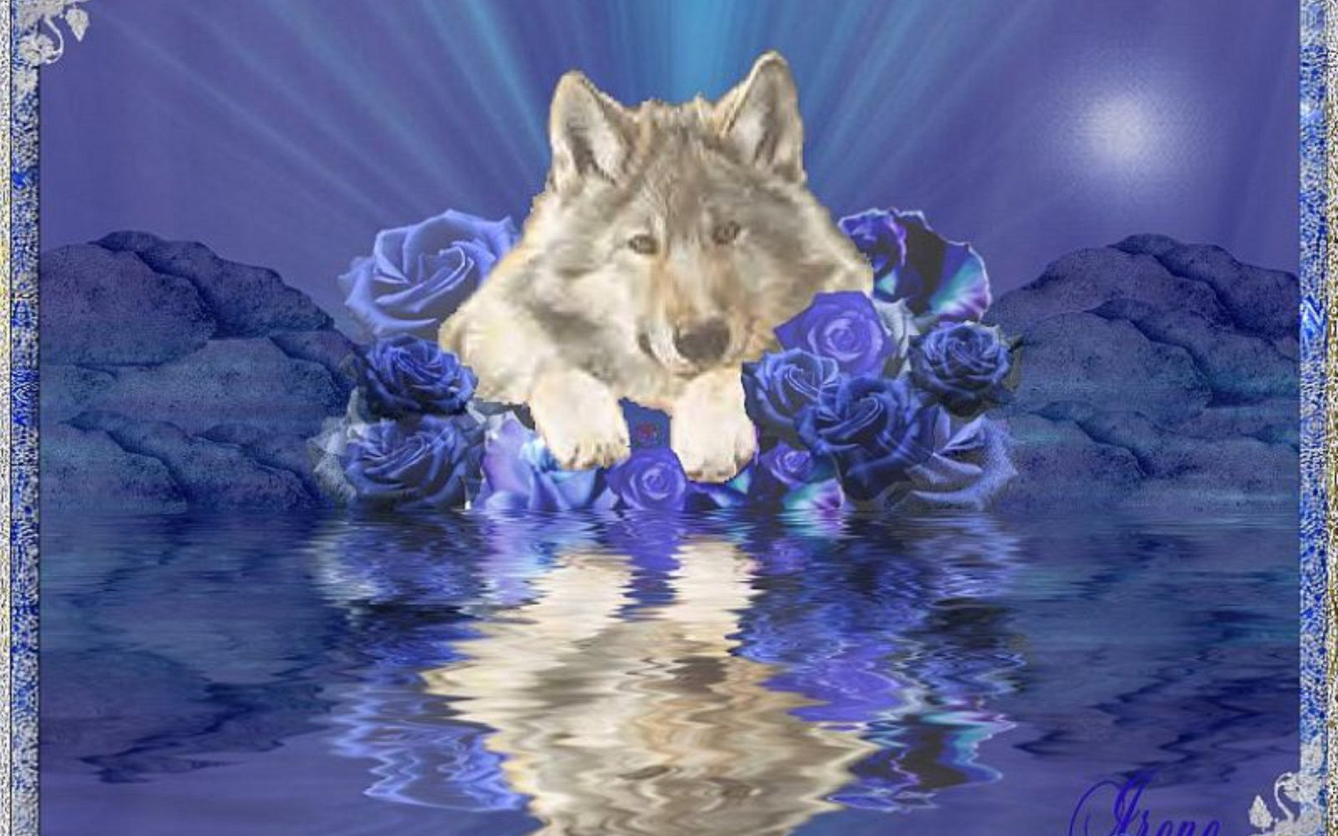 Гифка с днем рождения для мужчины с волками, поздравления днем