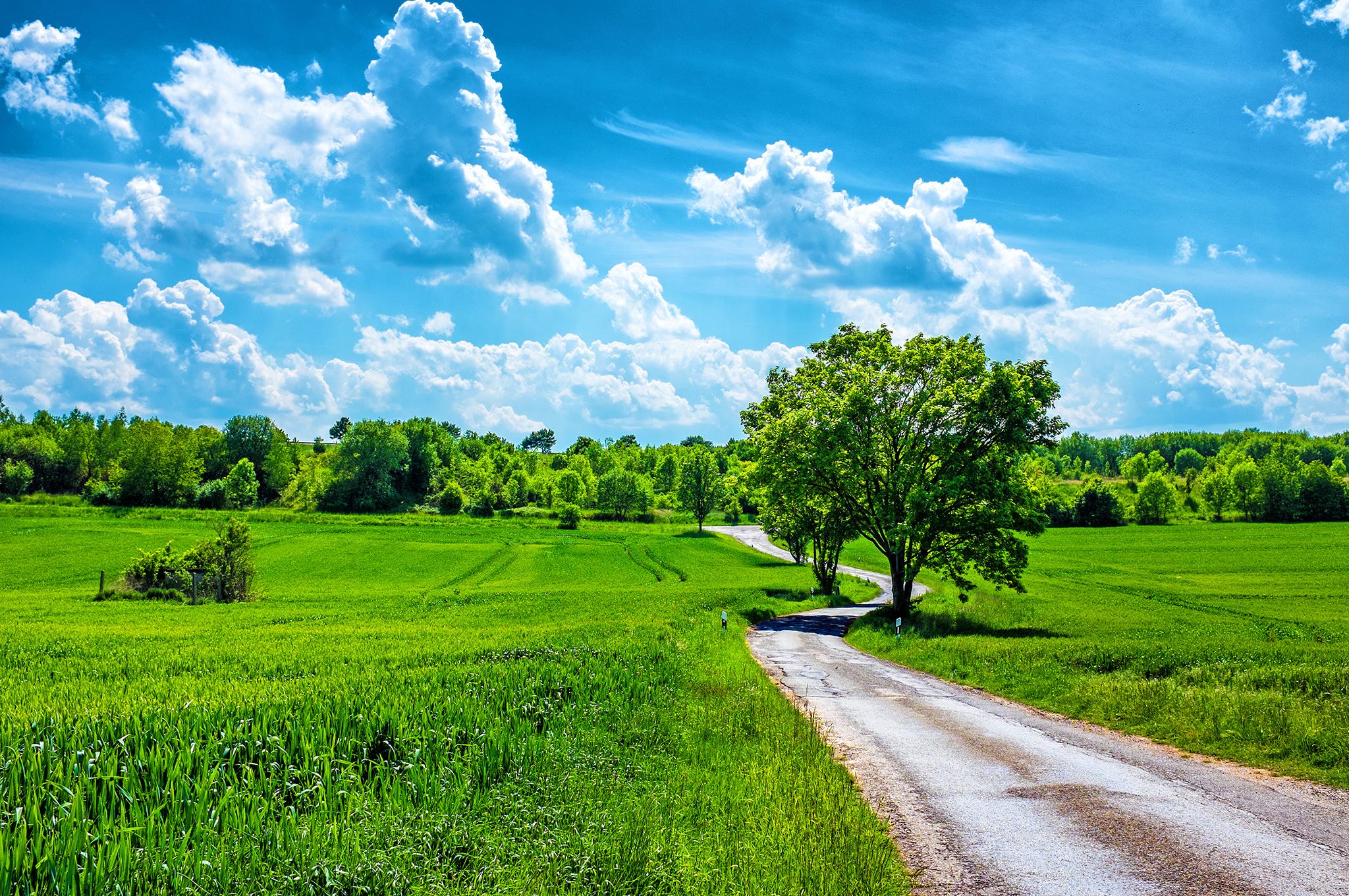 Картинки поздравление, картинки летний пейзаж красивые