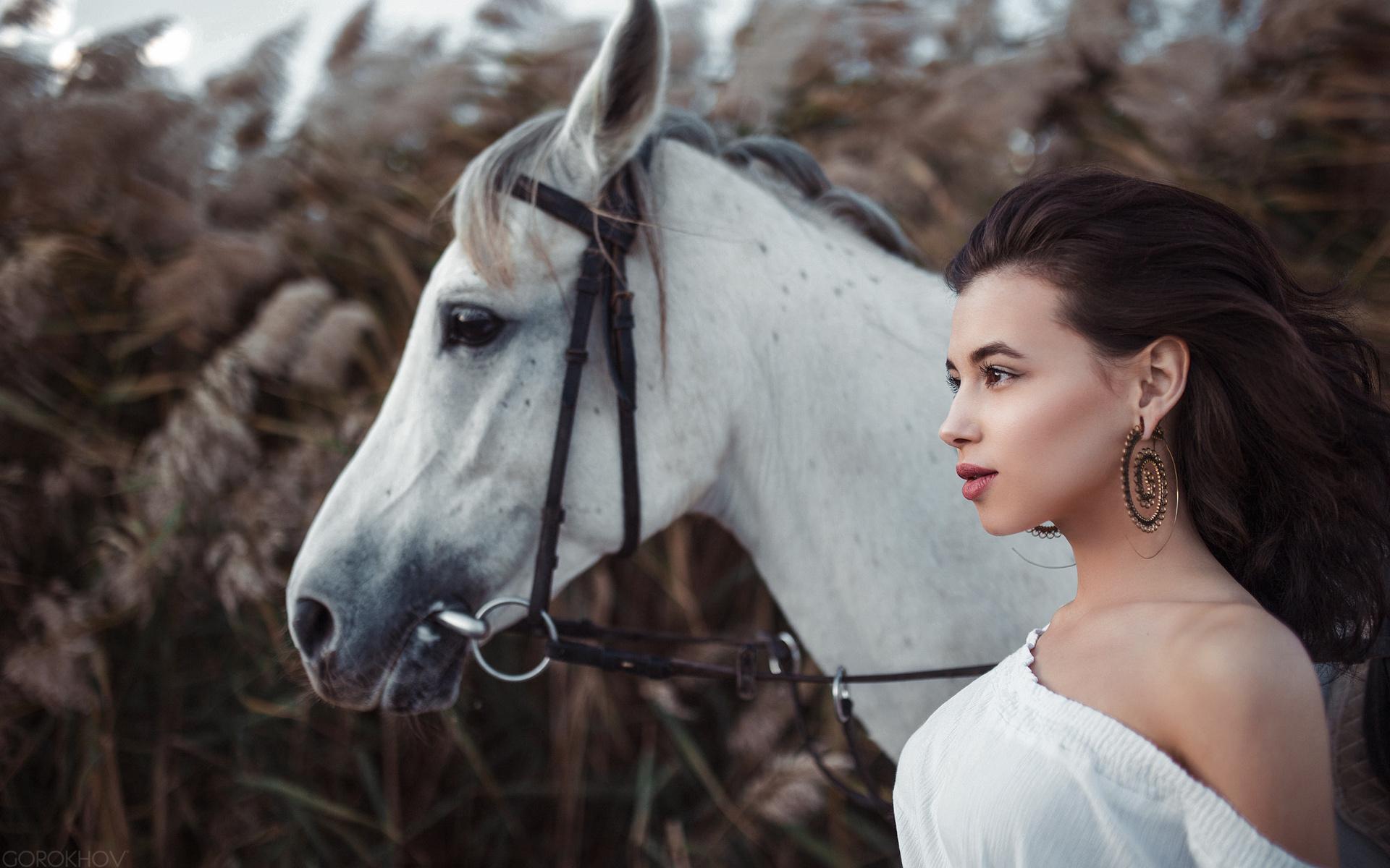 Картинки днем, картинки лошади и девушки