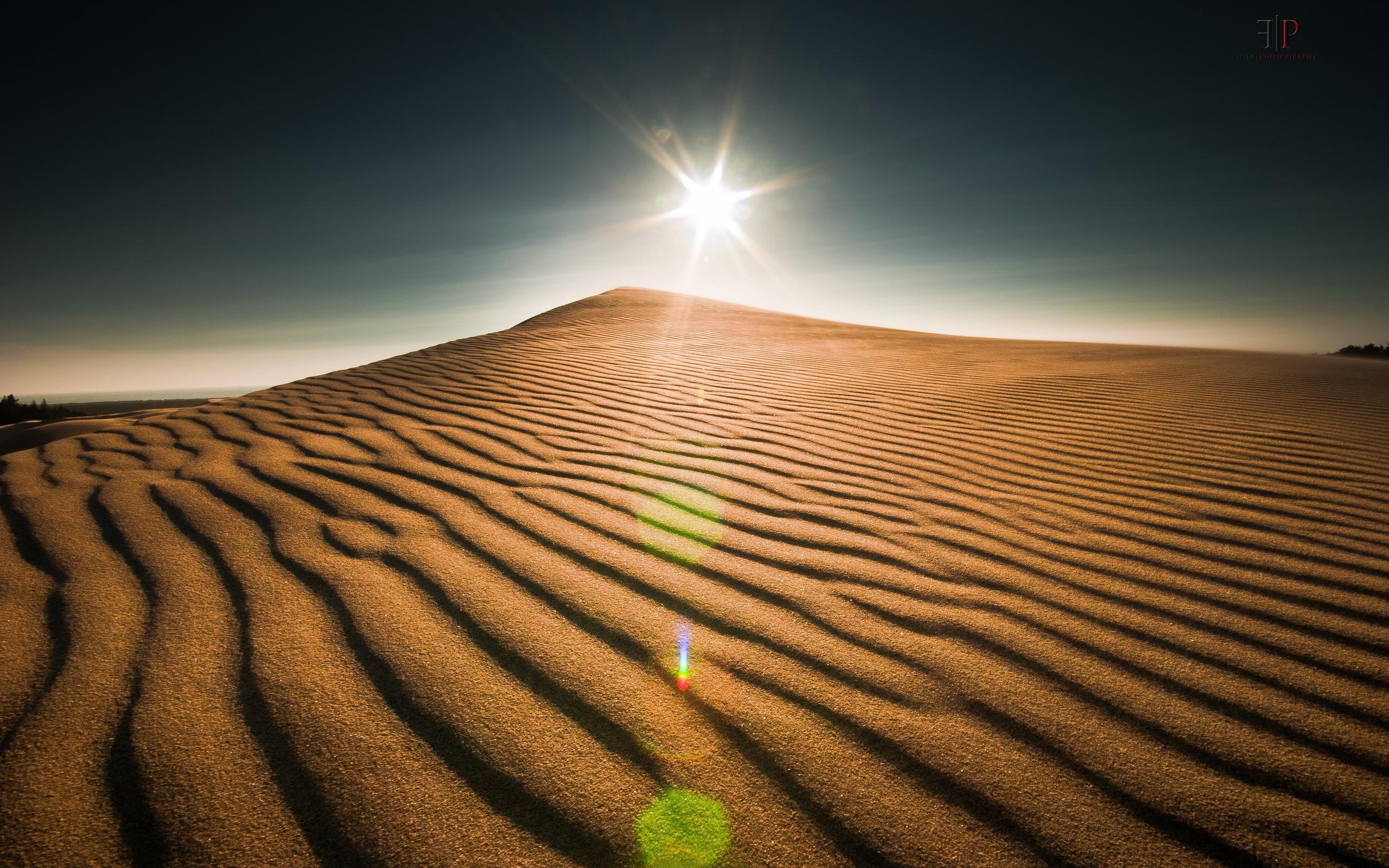 природа пустыня солнце  № 948785 бесплатно