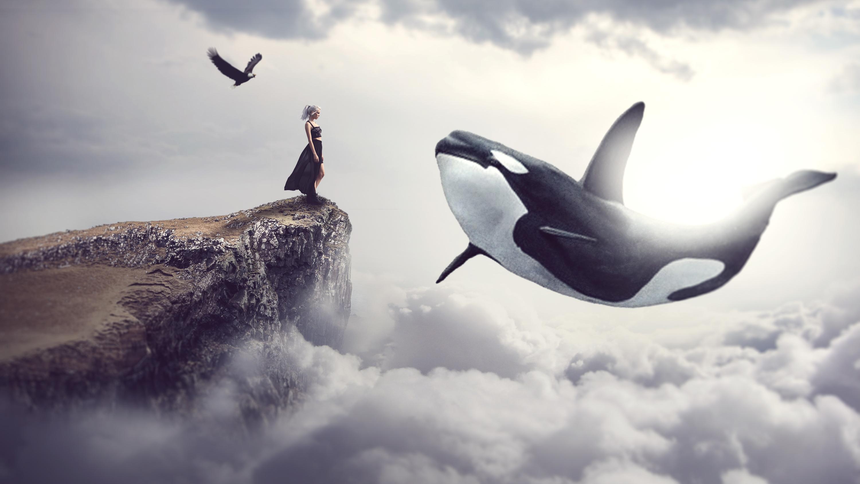 что киты в небе картинки высокого разрешения исправление