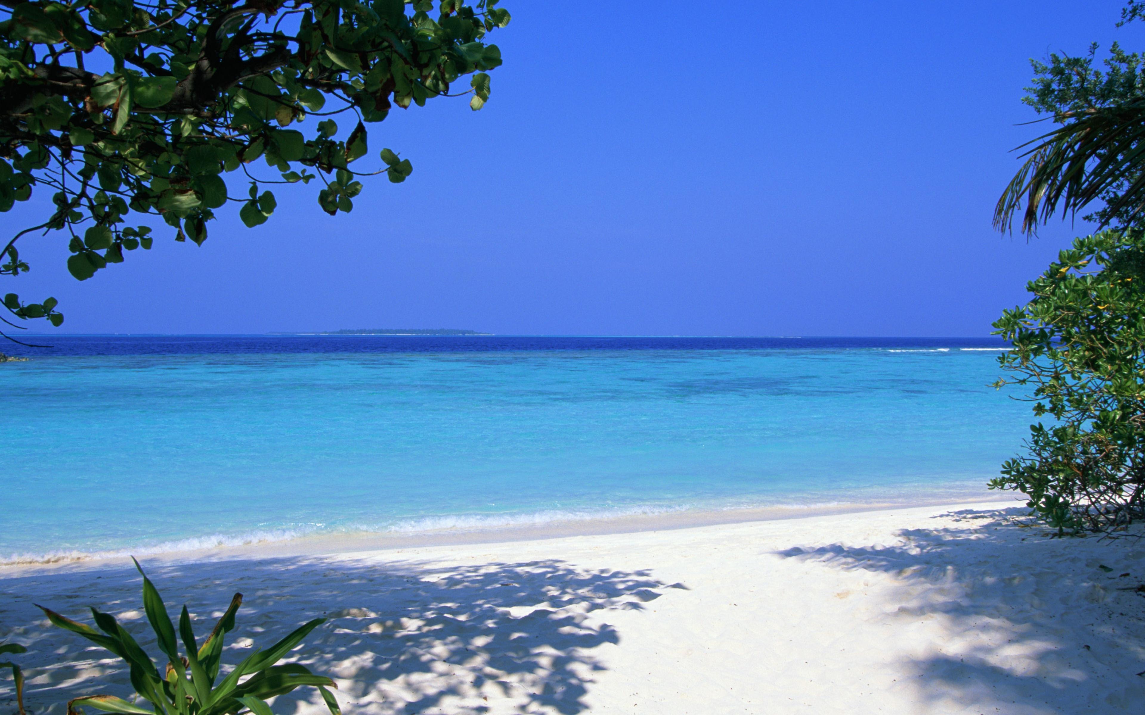 Море остров зелень бесплатно