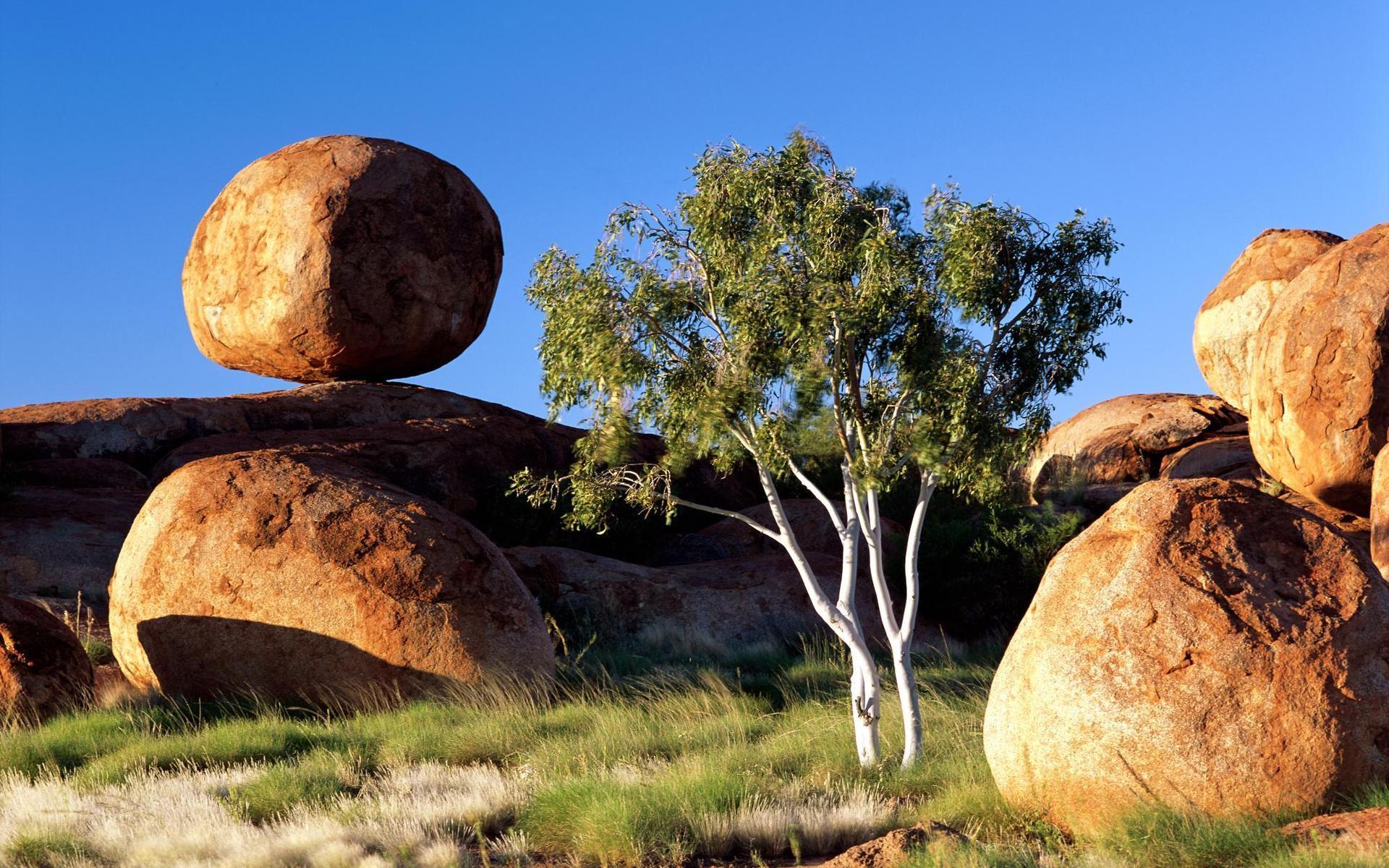 природа деревья камни небо  № 1601377 загрузить