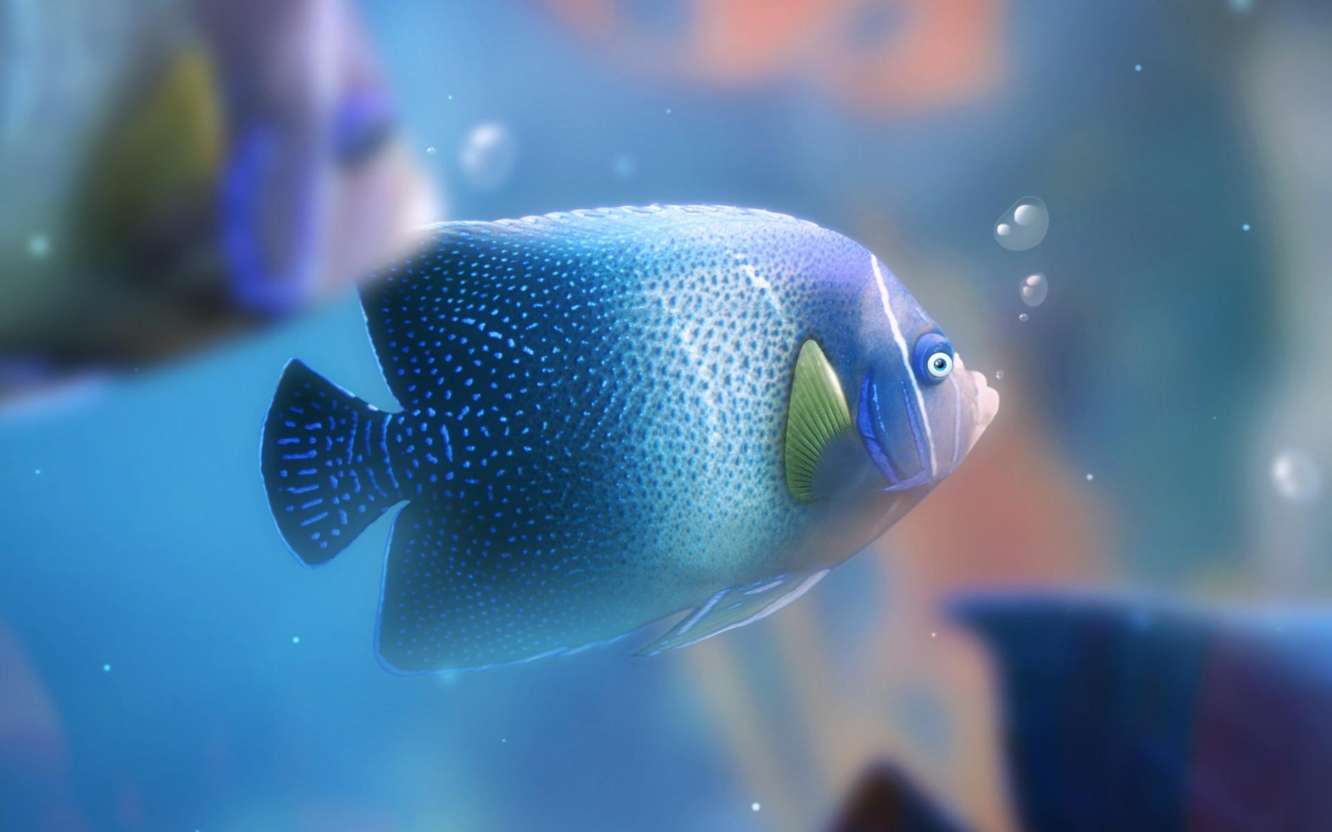 аквариум рыбы кораллы макро загрузить