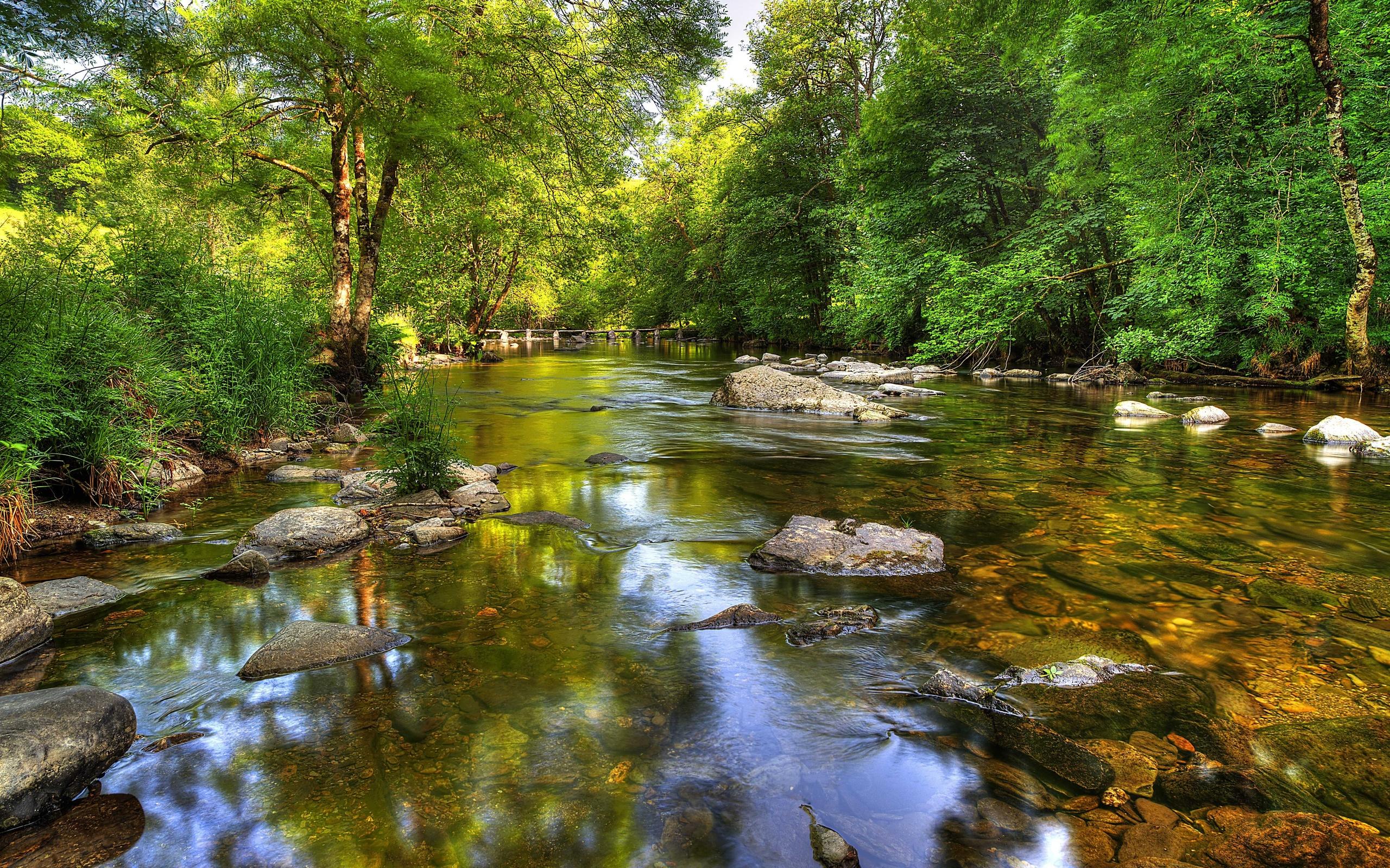 Открытки река