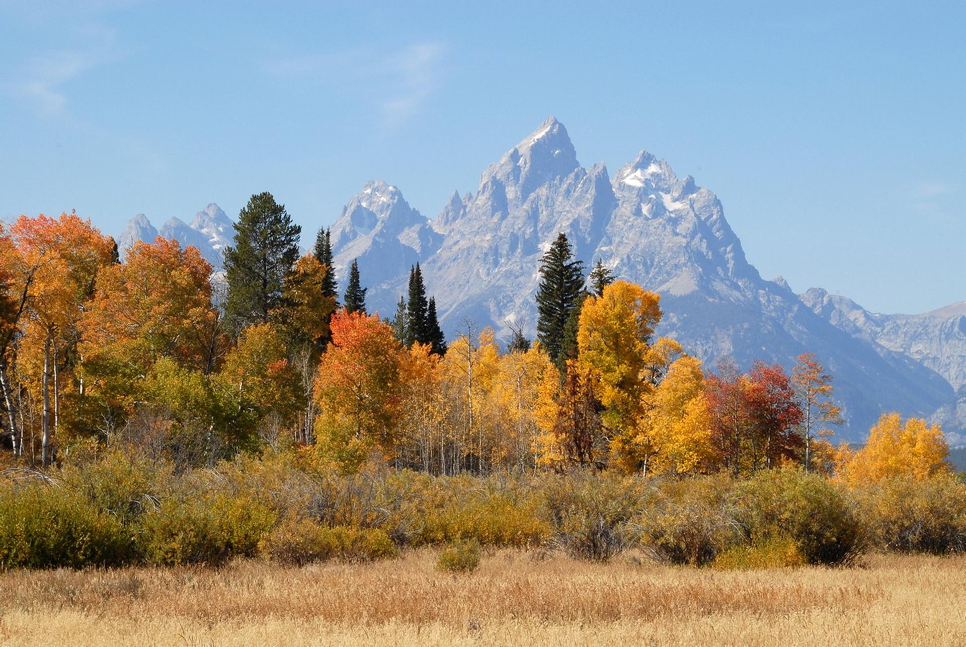Фото осень природа сентябрь