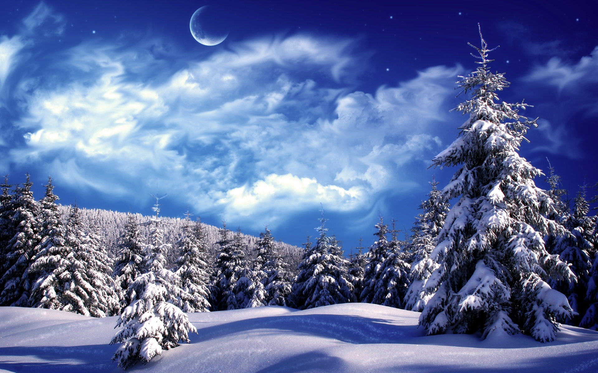 снег ели зима  № 3180948 без смс