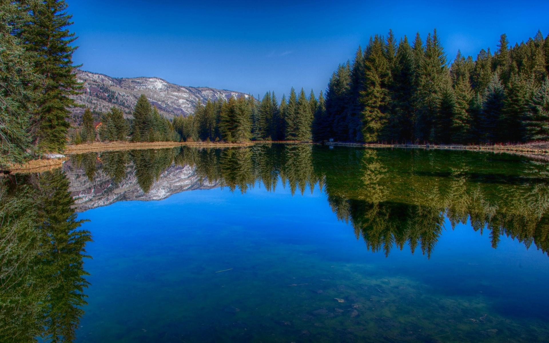 свои красивые картинки озеро лес местонахождение господина
