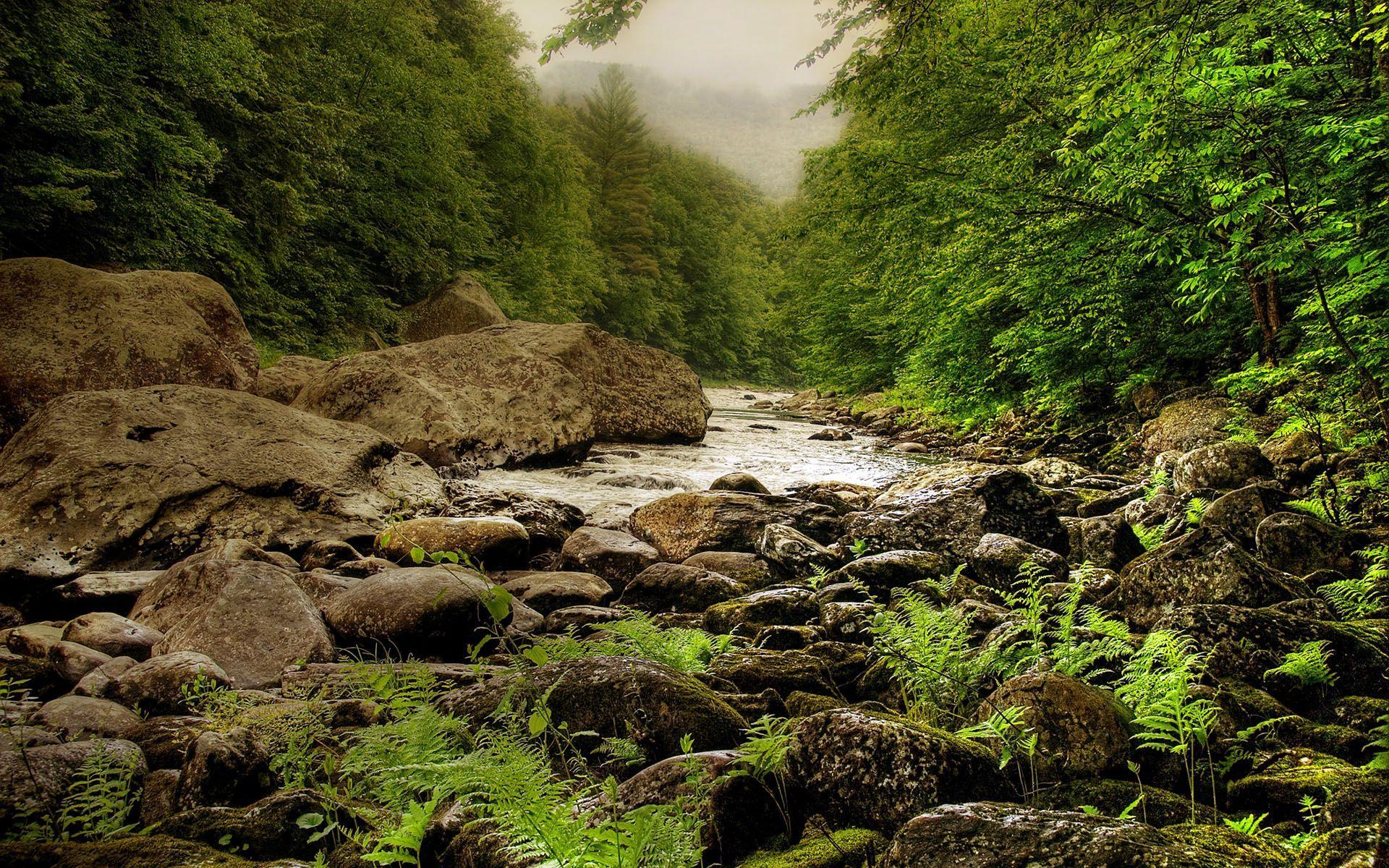 Река текущая по камням скачать