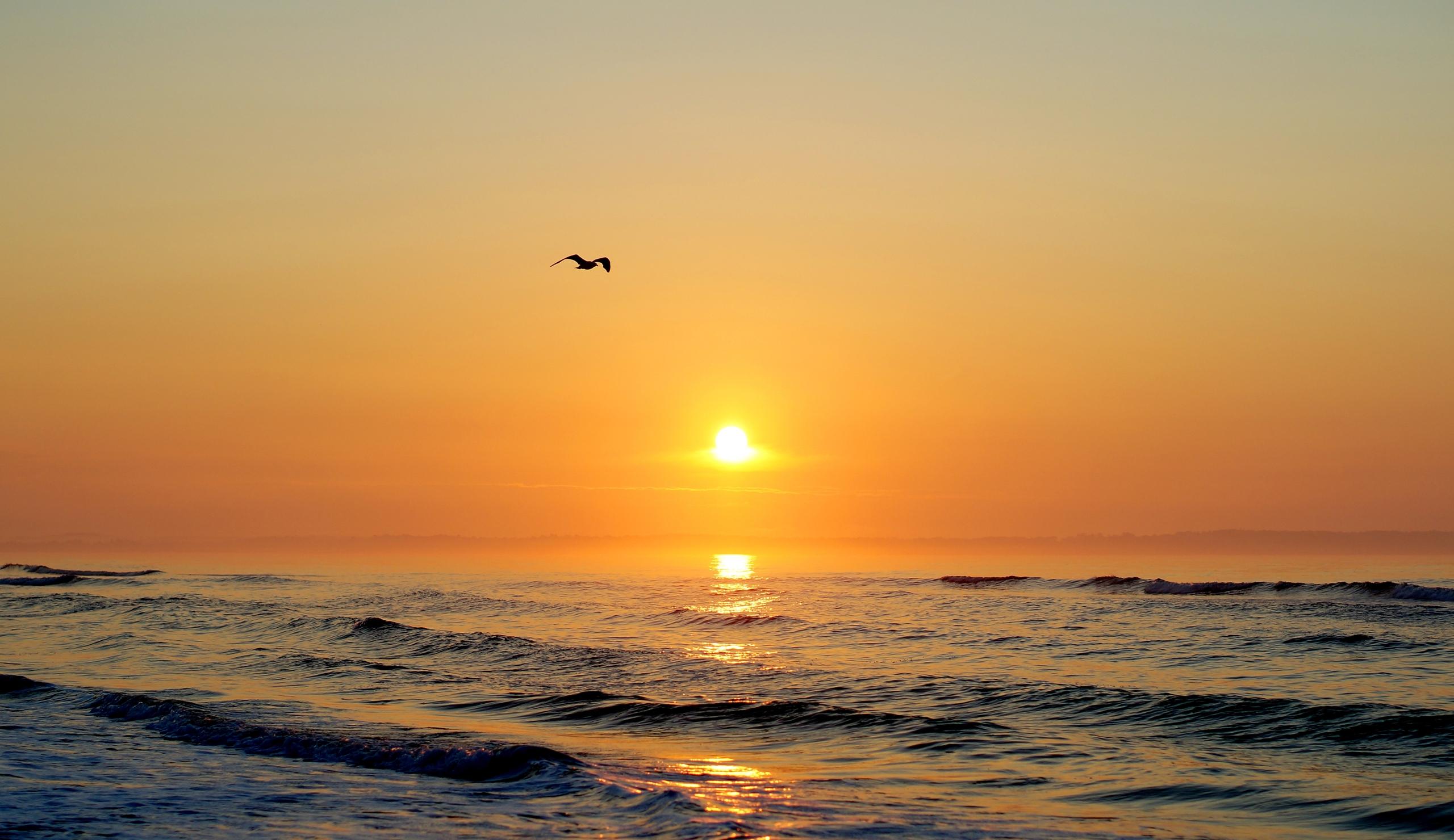 вертолет солнечный закат море бесплатно