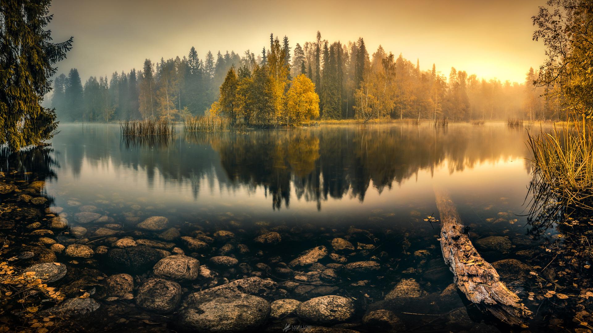 Туман над лесной речкой  № 636737 без смс
