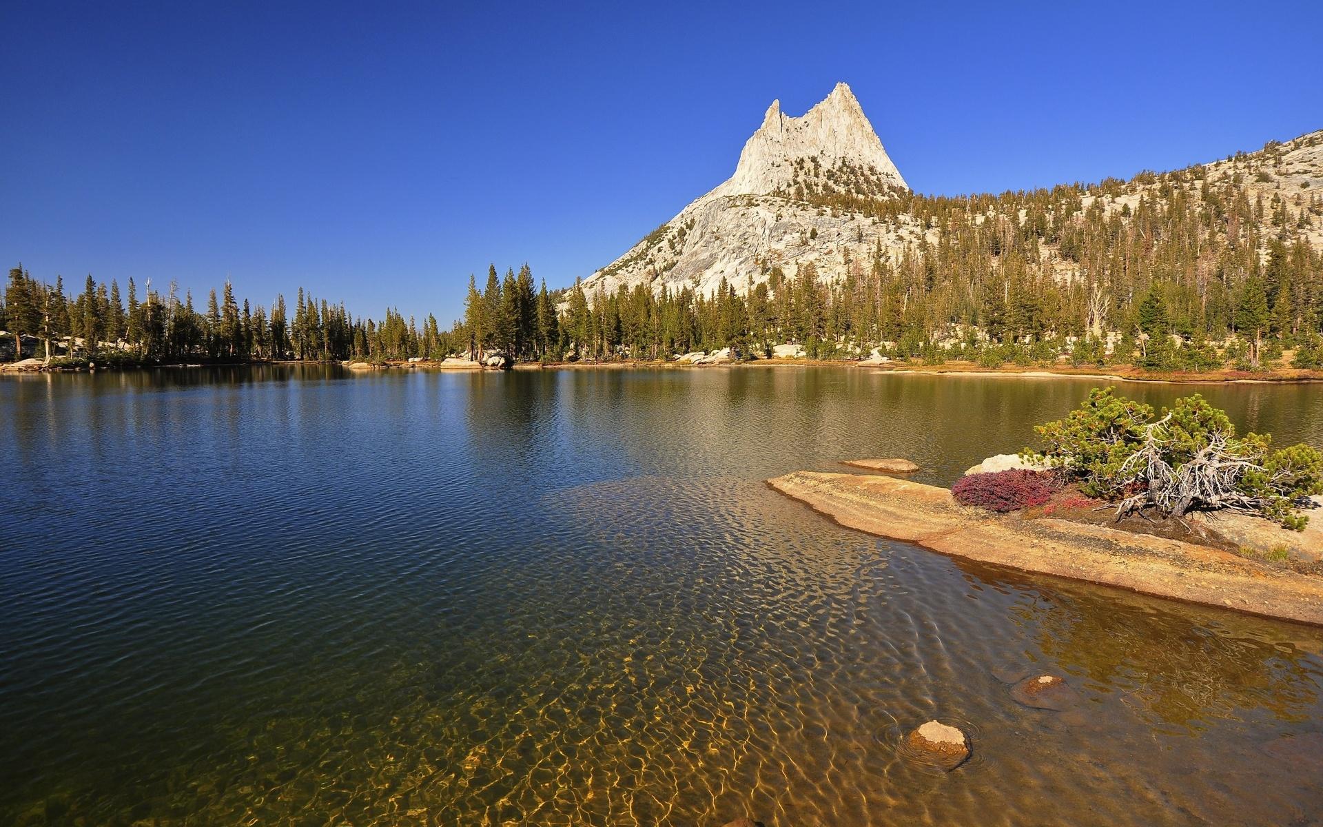 озеро гора ели без смс