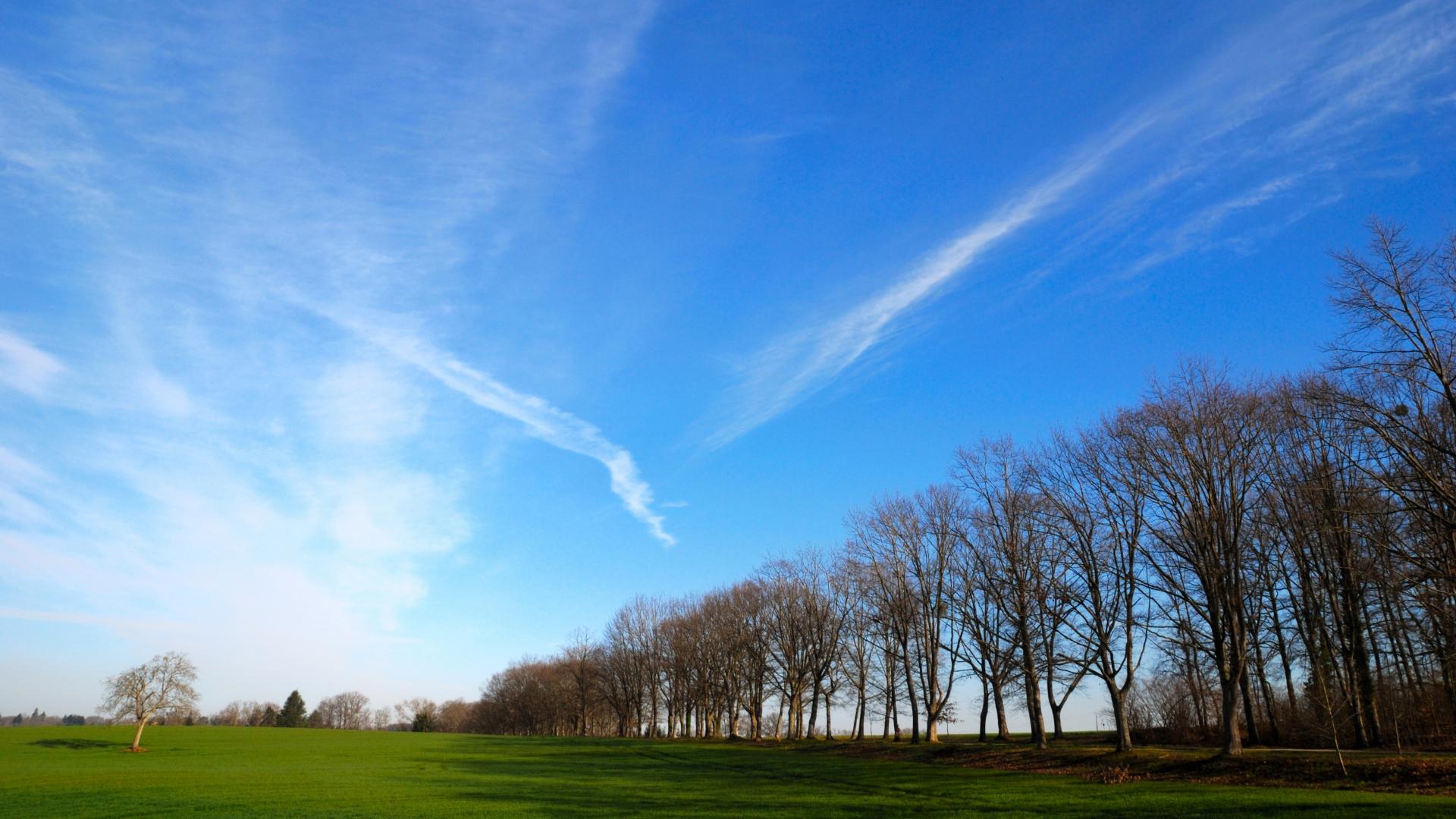 Горы ясный день поле деревья  № 3847593 бесплатно