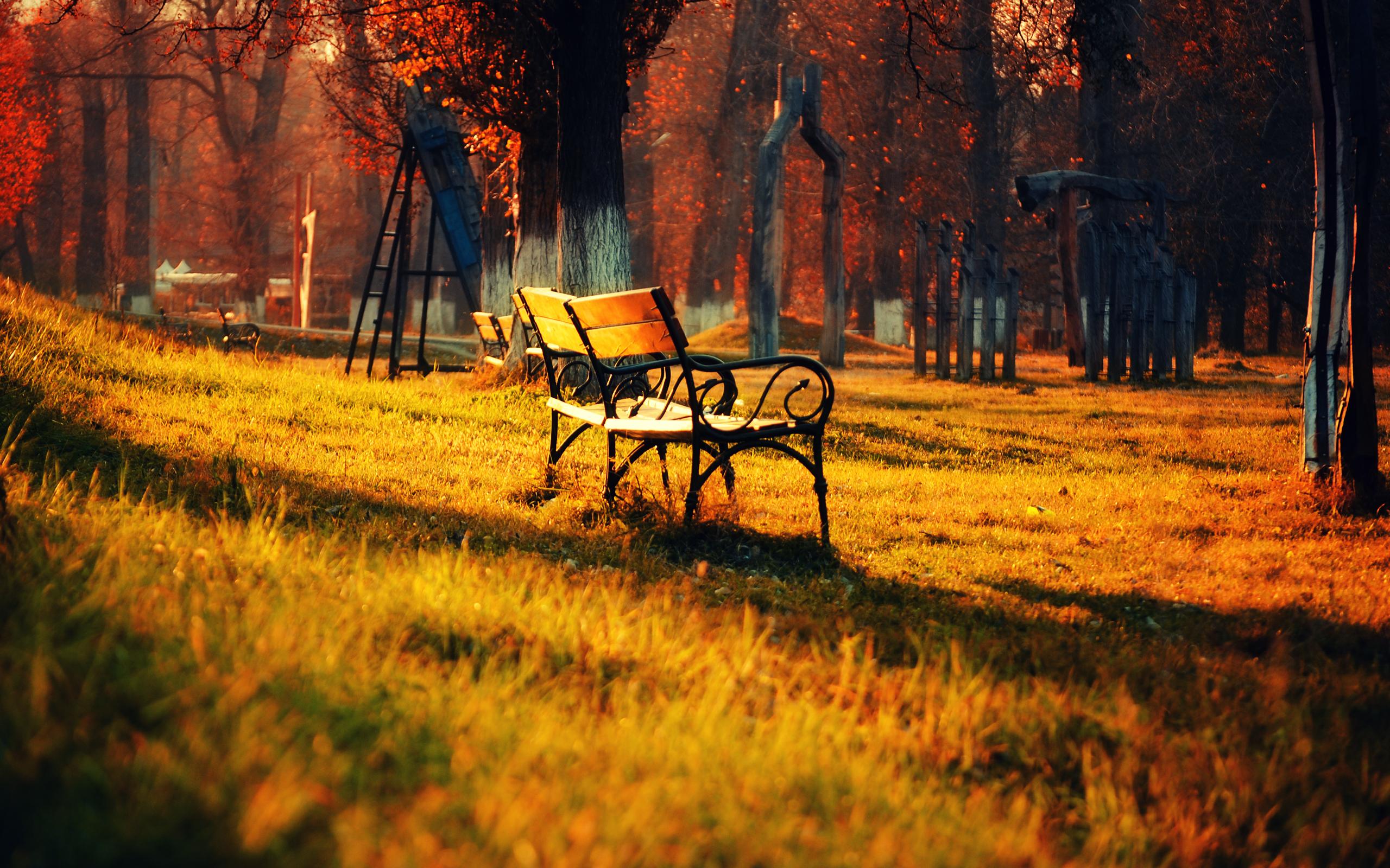 природа трава скамейка загрузить