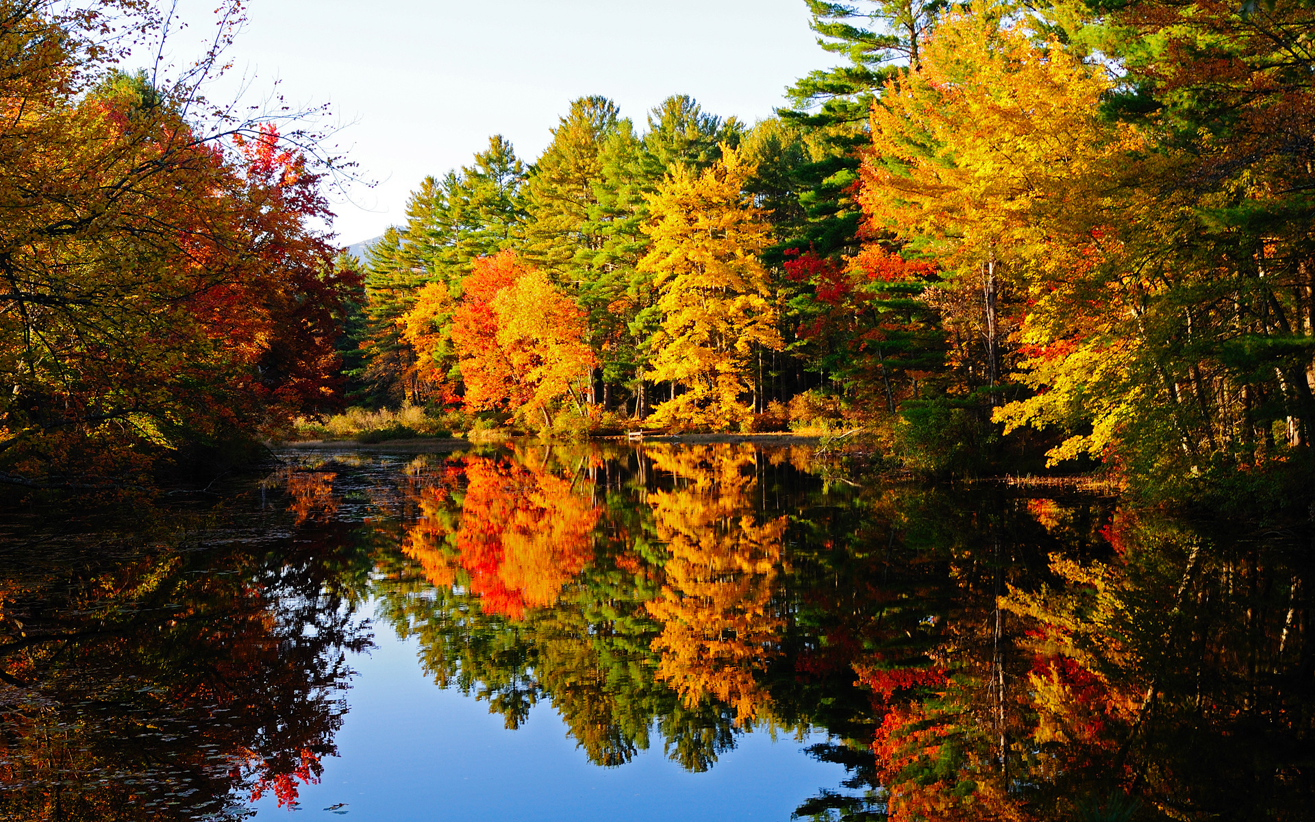 Осеннее картинки очень красивые