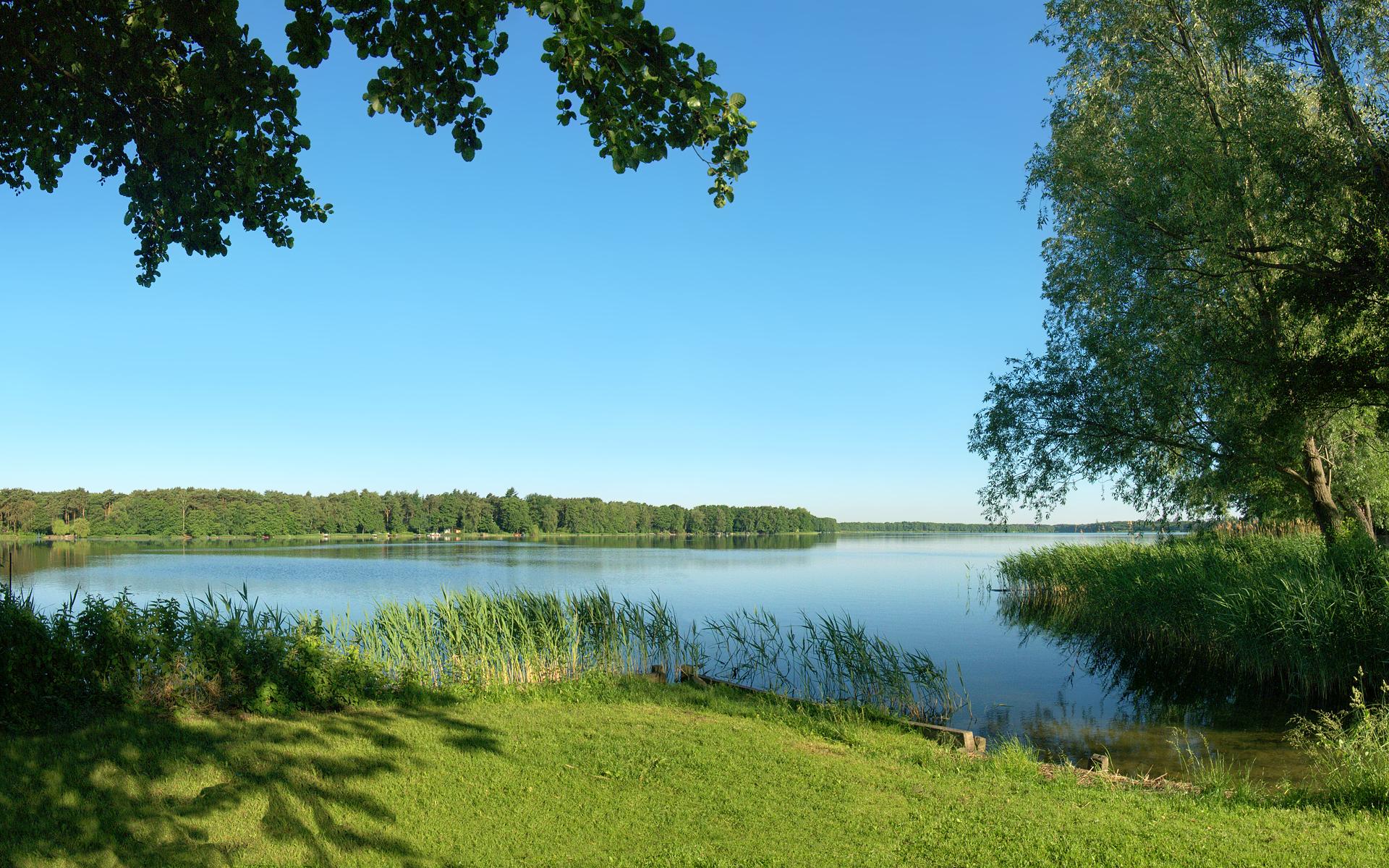 лето речка камыш  № 368785 без смс