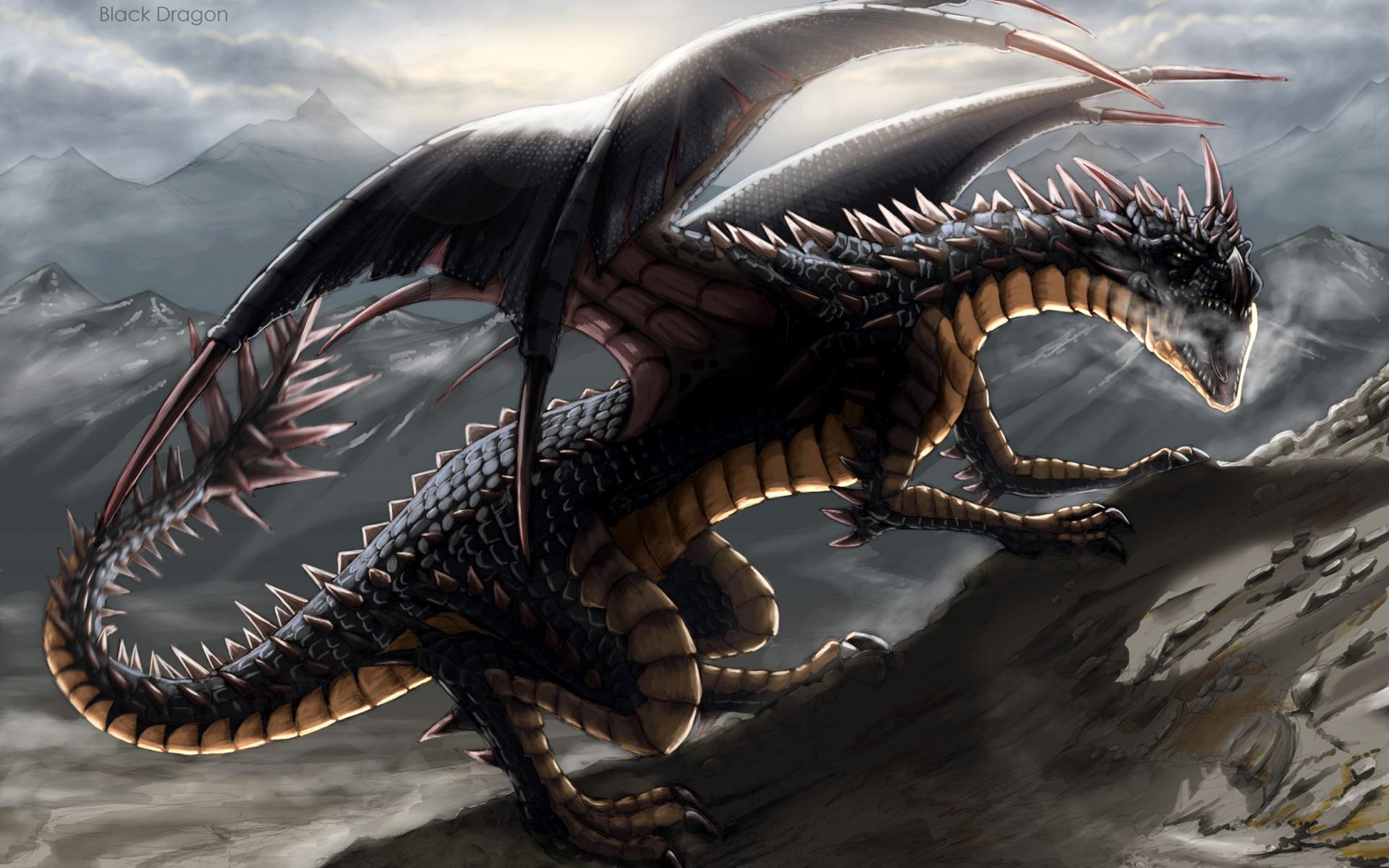 Картинка с черным драконом, картинки