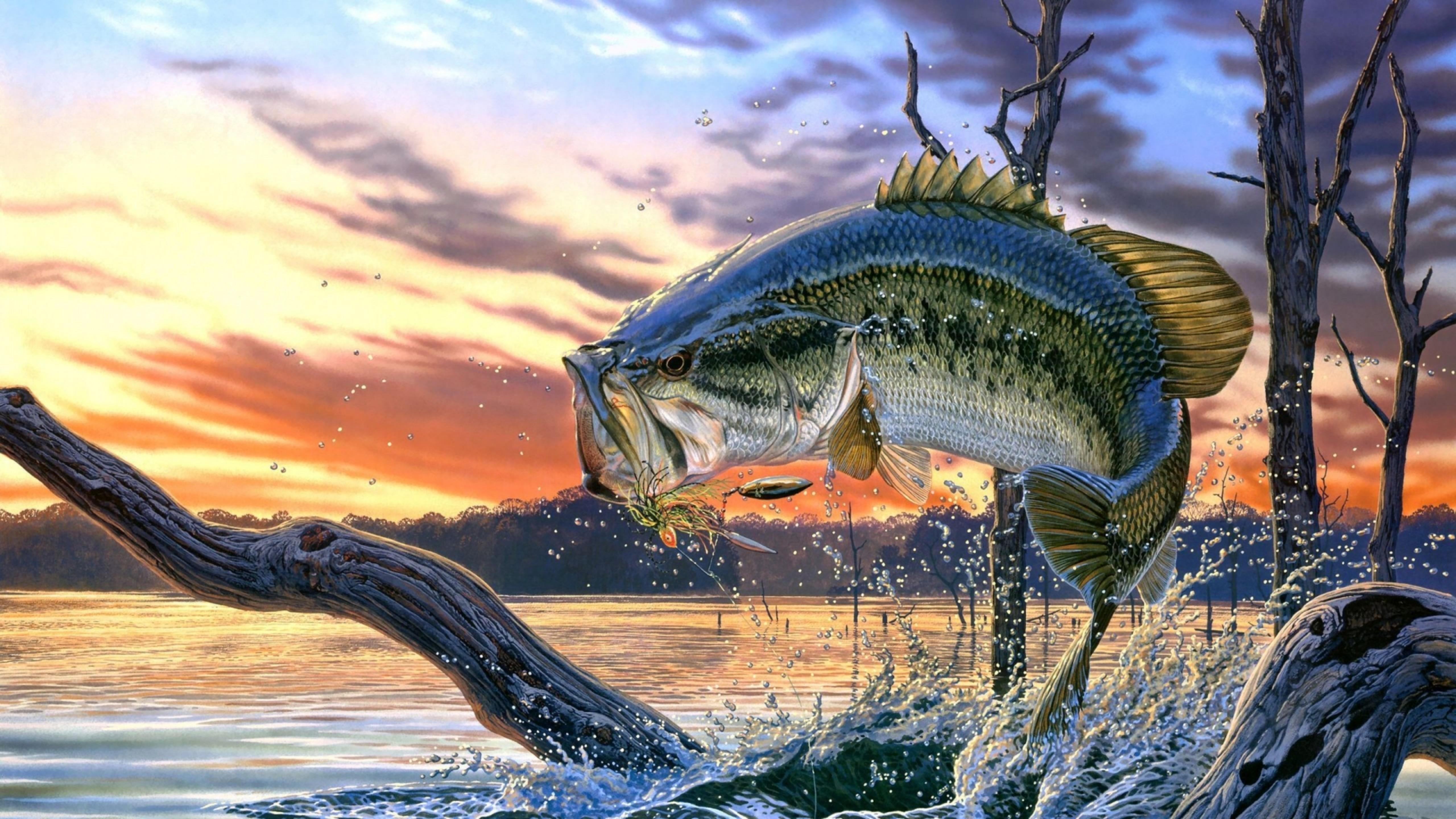 Красивые картинки рыбалки
