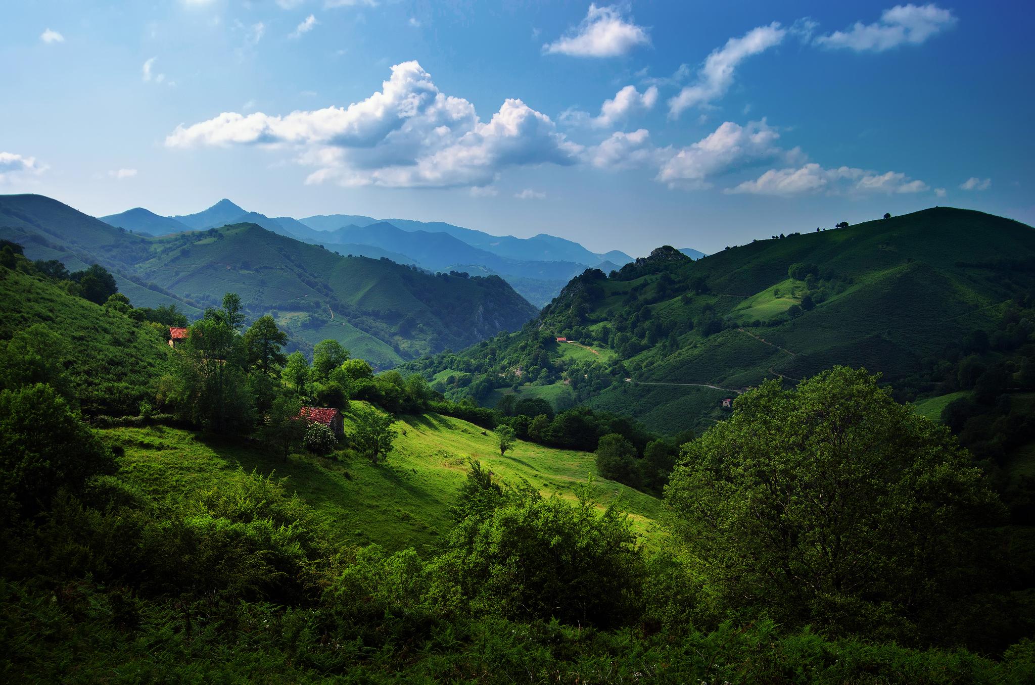 Швейцария Горы река деревья трава  № 184012 загрузить