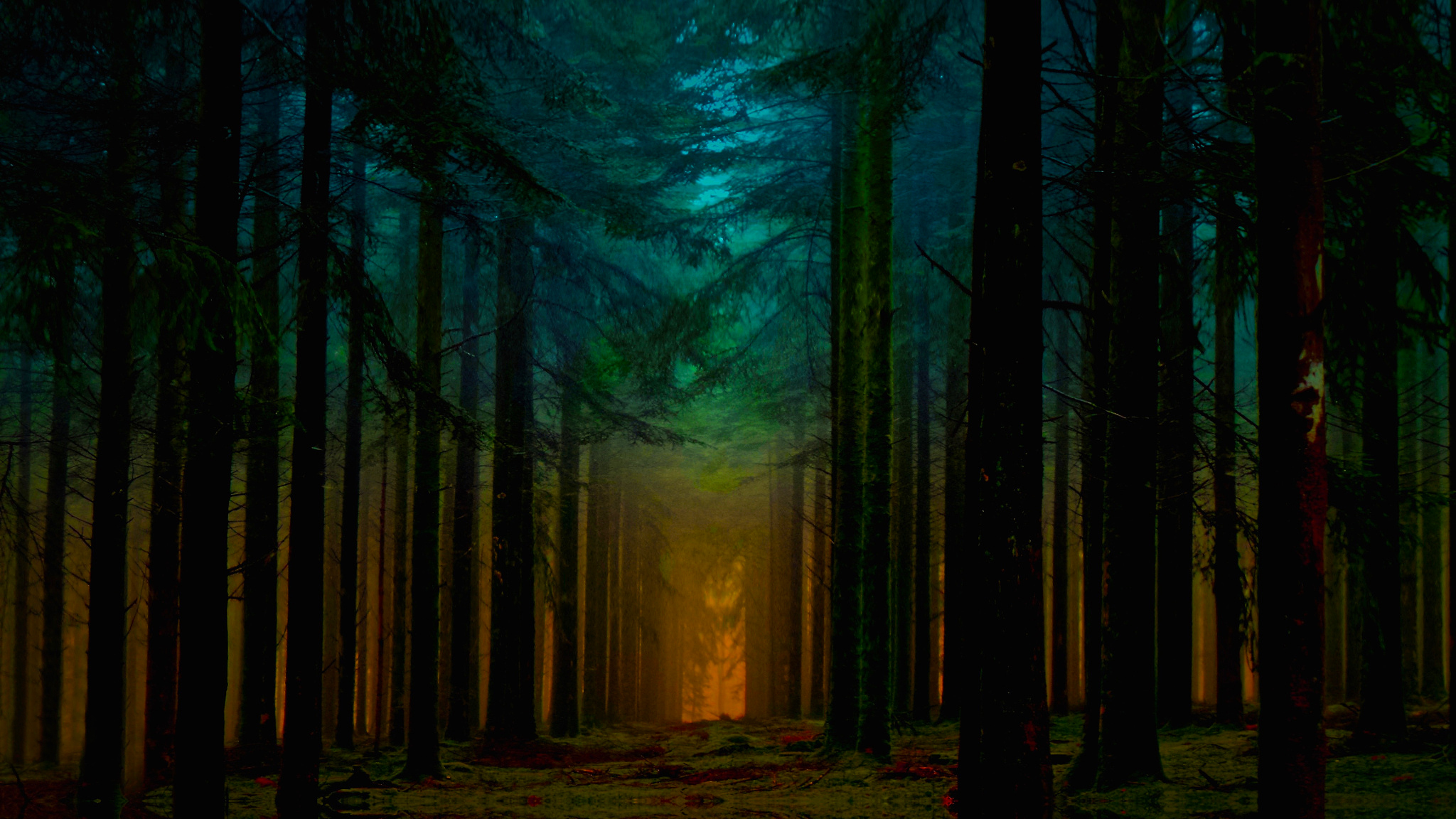 в чаще леса без смс