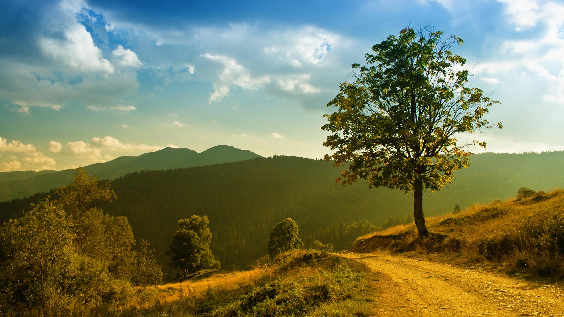 природа горы облака трава в хорошем качестве